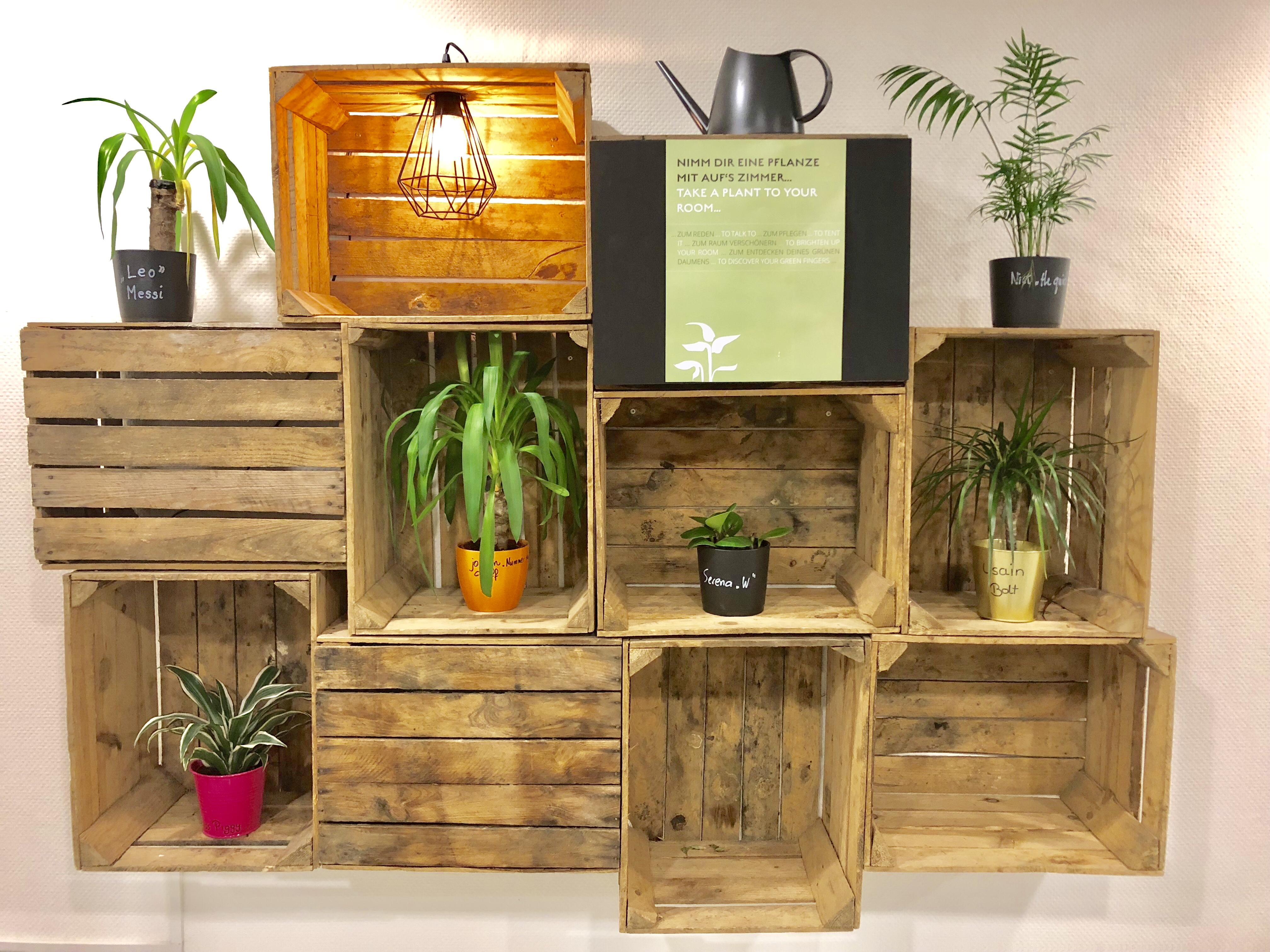 Ein Hotel, in dem man sich Pflanzen als Pate mit aufs Zimmer nehmen kann.